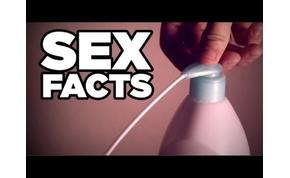14 vicces és megdöbbentő tény a szexről