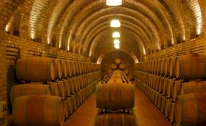 Nagyon jó minőségre számítanak a francia bortermelők