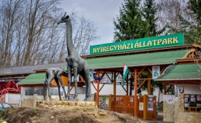 Európa legjobbja lett a Nyíregyházi Állatpark