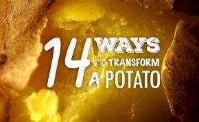14 fantasztikus krumplicsoda