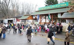 Idén 20 éves a Nyíregyházi Állatpark