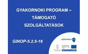 Gyakornoki Program – Támogató szolgáltatások - GINOP-5.2.5-16-2016-0001.