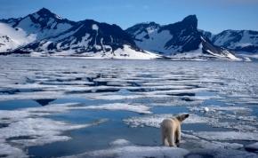 Tudomány: a feljegyzések óta sose volt ilyen meleg, mint 2016-ban