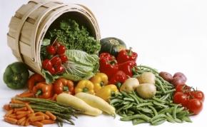 Ismét lesz Vegetáriánus Fesztivál