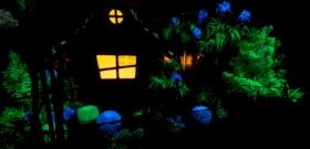 Innovációs díjat nyert a magyar feltaláló, aki megalkotta a világító növényeket