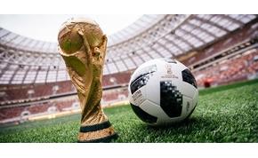 A tyúkanyó, az agyturkász és a specialista – ők a foci-vb legfontosabb háttéremberei