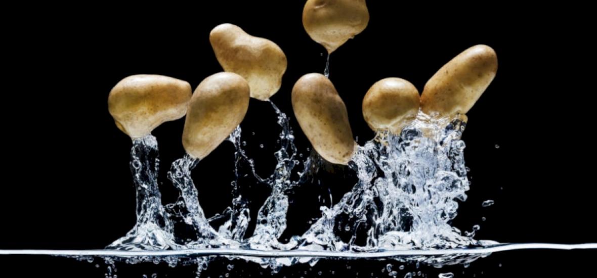 Zöldségháború, vagyis amikor burgonyák segítségével nyertek meg egy tengeri ütközetet