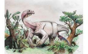 Hajnali óriás mennydörgés – felfedeztek egy új dinoszauruszt