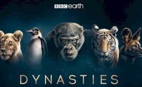 Lenyűgöző lesz David Attenborough új sorozata