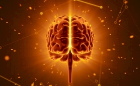 Magyar kutatók fedezték fel a stressz és az álmatlanság kulcsrendszerét