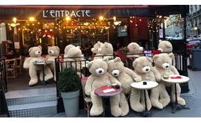 Medveinvázió Párizsban