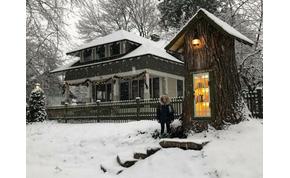 Egy 110 éves nyárfa belseje lett a világ legkisebb könyvtára