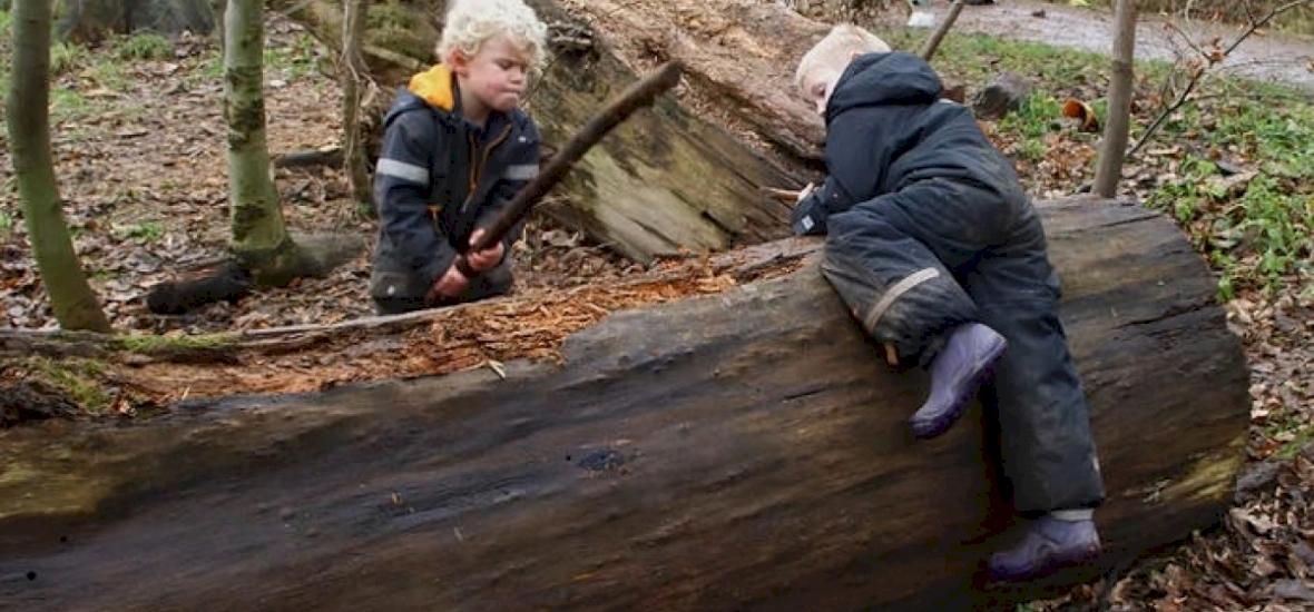 Gyerekek a vadonban: az erdei óvodák