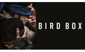Túlment a határon a Bird Box-kihívás