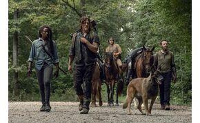 Zöld utat kapott az új The Walking Dead évad