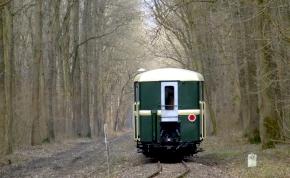 Újra jár a kisvasút a Gemenci erdőben