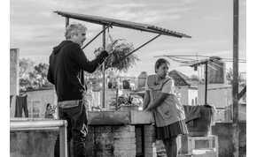 A Roma Oscar-ja egy nagy hollywoodi vita végére tenne pontot