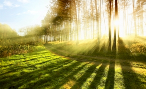Napfénnyel festeni az igazán menő dolog