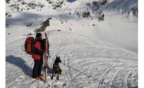 Kiállta a próbát Székelyföld egyetlen lavinamentő kutyája