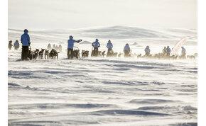 Magyarok is nekivágtak a sarkvidéknek kutyaszánnal