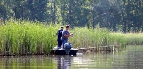 Mintha ott lennél a Tisza-tóban: zseniális az új halas videó