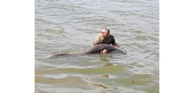 Friss halrekord: videó a hazai szörnyről, ami embernél is nagyobb
