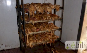 Horrovideó: békamúmiát is találtak egy hazai vágóhídon