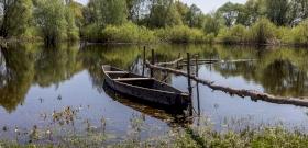 Rövid időn belül 400 ezer csukát engedtek a Tisza-tóba