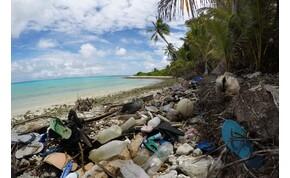 Egymillió papucs, 400 ezer fogkefe szennyezi az utolsó paradicsomot