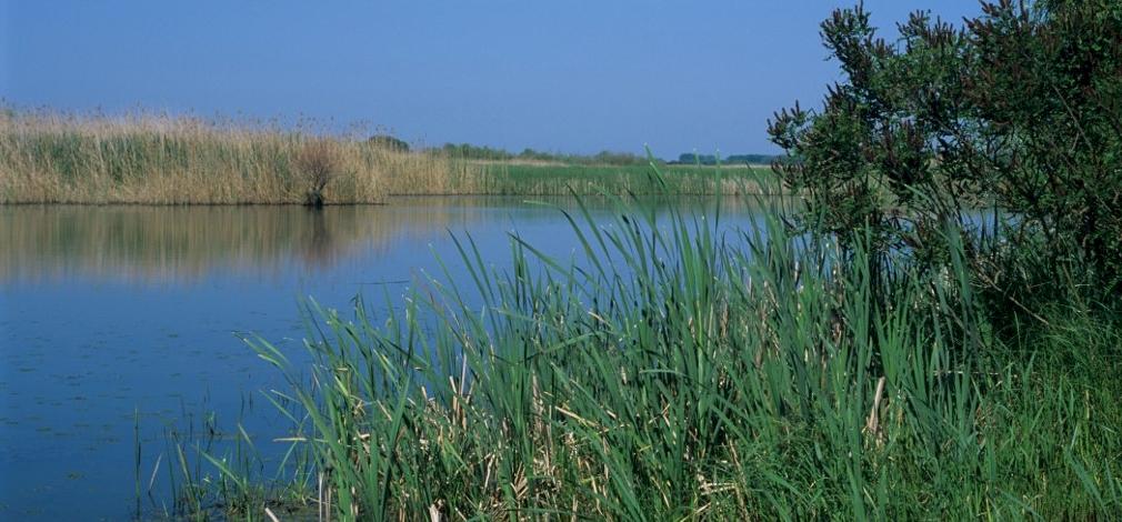 Hulladékderbit tartanak a Tisza-tavon