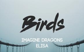 Friss hangot kapott a Birds az Imagine Dragonstól