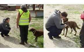 Két év után talált rá elvesztett kutyájára a férfi – látni kell az állat örömét