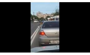 Az gáz, ha a tigrised zöld lámpánál ugrik ki a kocsidból?