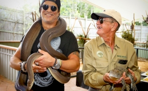Hátborzongató, ahogy egy piton krokodilt eszik, nem is kicsit – kép