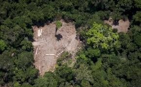 Avatar a Földön: kegyetlen tempóban irtják tovább az Amazonas erdőit