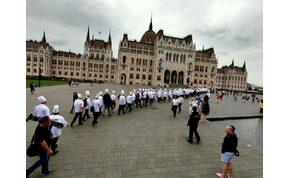 Vajon mi lesz Magyarország Étele 2020-ban?