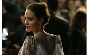 Meztelenül állt kamerák elé Angelina Jolie – képek