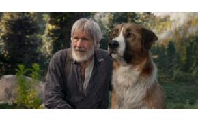 Harrison Ford egy számítógépes kutyával kalandozik