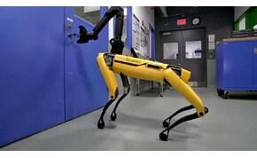 Félelmetes jövő: élesben vetett be robot rendőrkutyákat a rendőrség – videó