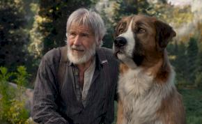 Szinkronos előzetest kapott Harrison Ford és a CGI kutyus