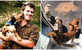 Pillanatképek sofőrök és kiskutyák találkozásáról