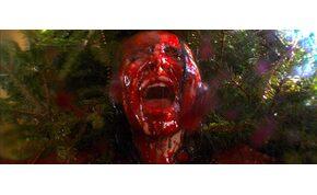 A karácsonyfák megölik az embereket, ugye? – videó