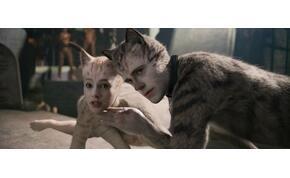 Még a saját színészei is beolvasnak a Macskáknak