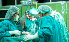 Rekordszámú szívátültetés volt 2019-ben Magyarországon