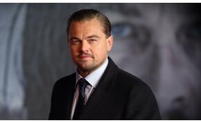 Leonardo DiCaprio óriási összeget ajánlott fel Ausztráliának