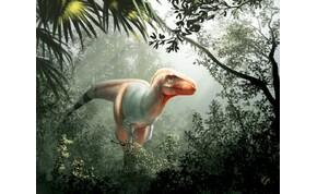 Egy teljesen új dinoszauruszfajt fedeztek fel – videó