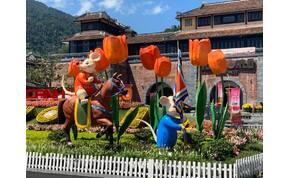 Zsolt utazása: a Hollandiát idéző tulipánkert Vietnámban – galéria