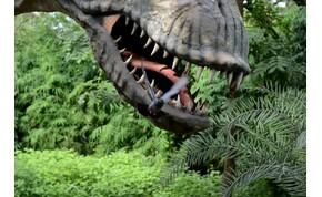 """""""Ahogy a Jurassic Parkban mondják, a természet mindigutat tör magának"""" – videó"""