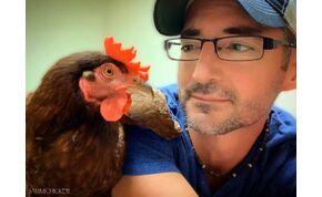 Egy férfi öszekötötte az életét egy igazi csirkével, együtt fürdenek, együtt hálnak – videó