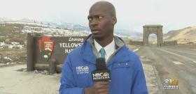 A riporter meglátta a bölényeket, látnod kell, ami ezután történt